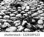 path with stones. halftones... | Shutterstock . vector #1228189123