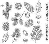 hand drawn spruce branches and... | Shutterstock .eps vector #1228205326