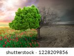 ecological concept with tree... | Shutterstock . vector #1228209856