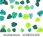 philodendron or monstera plant. ... | Shutterstock .eps vector #1228231243