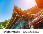 view of the forbidden city in... | Shutterstock . vector #1228231369