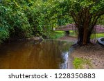 image of water pond at pong nam ... | Shutterstock . vector #1228350883