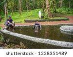 mae hong son   thailand  ... | Shutterstock . vector #1228351489