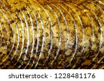 close up golden leaves on... | Shutterstock . vector #1228481176
