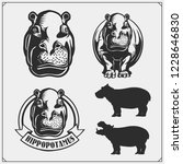 set of emblems with hippo for a ... | Shutterstock .eps vector #1228646830