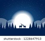 vector illustration  flat night ... | Shutterstock .eps vector #1228647913