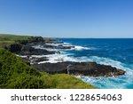 phillip island nature park  ...   Shutterstock . vector #1228654063