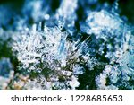 hoarfrost on the branches. ice... | Shutterstock . vector #1228685653