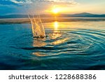 splashes on the water at sunset.... | Shutterstock . vector #1228688386