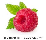 fresh raspberry with leaf... | Shutterstock . vector #1228721749