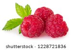 fresh raspberry with leaf... | Shutterstock . vector #1228721836