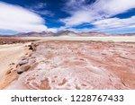 """the amazing """"salar de piedras...   Shutterstock . vector #1228767433"""