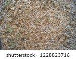unusual brown background of... | Shutterstock . vector #1228823716