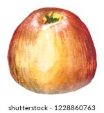 watercolor hand drawn red apple.... | Shutterstock . vector #1228860763