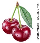 two cherries with cherry leaf... | Shutterstock . vector #1228877746