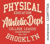 vintage athletic typography... | Shutterstock .eps vector #1228977526