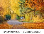 view of the empty autumn... | Shutterstock . vector #1228983580