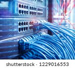 network cable connecting on... | Shutterstock . vector #1229016553