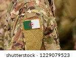 algeria flag on soldiers arm.... | Shutterstock . vector #1229079523