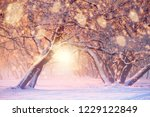 christmas or new year...   Shutterstock . vector #1229122849