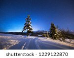 winter night scenery. winter...   Shutterstock . vector #1229122870