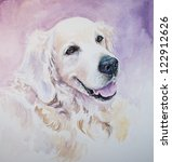 Portrait Of Golden Retriever...