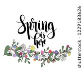 spring is here  hand drawn... | Shutterstock .eps vector #1229183626