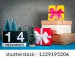 december 14th. image 14 day of... | Shutterstock . vector #1229195206