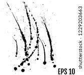 black paint  ink splash ... | Shutterstock .eps vector #1229203663