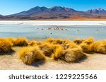 The Colorful Canapa Lagoon In...