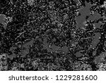abstract background. monochrome ...   Shutterstock . vector #1229281600