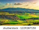 maremma countryside  rolling... | Shutterstock . vector #1229287150