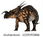 einiosaurus dinosaur tail 3d... | Shutterstock . vector #1229292886