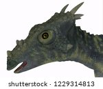 dracorex dinosaur head 3d... | Shutterstock . vector #1229314813