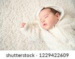 a portrait of a cute sleeping... | Shutterstock . vector #1229422609