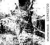 grunge dark black and white... | Shutterstock .eps vector #1229422720