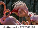 flamingo cleans its plumage | Shutterstock . vector #1229509120
