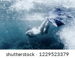 active young woman freediver in ... | Shutterstock . vector #1229523379