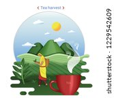 flat farm landscape... | Shutterstock .eps vector #1229542609