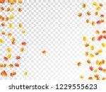 maple leaves vector  autumn... | Shutterstock .eps vector #1229555623