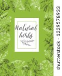template card with medicinal... | Shutterstock .eps vector #1229578933