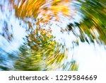 Abstract Tree Crowns In Vertigo ...