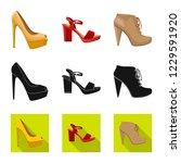 vector design of footwear and... | Shutterstock .eps vector #1229591920