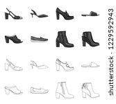 vector illustration of footwear ... | Shutterstock .eps vector #1229592943