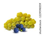 fresh  nutritious  tasty grapes.... | Shutterstock .eps vector #1229598559