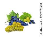 fresh  nutritious  tasty grapes.... | Shutterstock .eps vector #1229598580