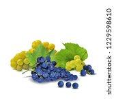 fresh  nutritious  tasty grapes.... | Shutterstock .eps vector #1229598610