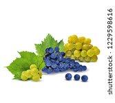 fresh  nutritious  tasty grapes.... | Shutterstock .eps vector #1229598616