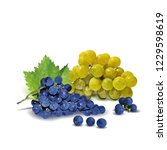 fresh  nutritious  tasty grapes.... | Shutterstock .eps vector #1229598619