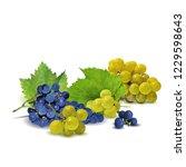fresh  nutritious  tasty grapes.... | Shutterstock .eps vector #1229598643
